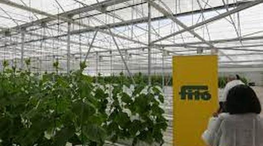 La apuesta de Fitó en Fruit Attraction refleja su compromiso con el sector