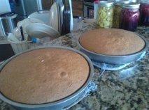 Albino Dragonfly Cake Recipe