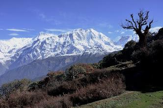 Photo: Au-dessus de Chomro Dharmasala