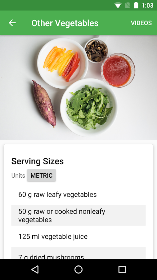 Dr. Greger's Daily Dozen – Screenshot