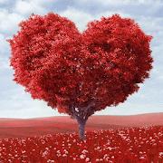 Heart Tree Love 1.1.5 Icon