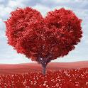 Сердце Дерево Любви