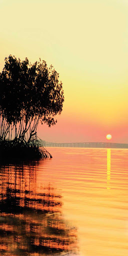 Fort-Meyers-sunset.jpg - Take in scenic sunsets over serene beaches in Fort Myers, Fla., during a vacation with American Cruise Lines.