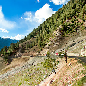 by Sudipto Ghosh - Landscapes Mountains & Hills ( hills, mountain, blue sky, trees, road, pine trees )