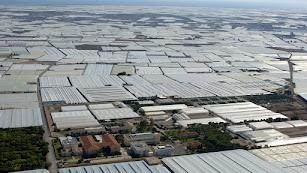 El ordenamiento del territorio agrícola, en lo que respecta a la agricultura intensiva, es objeto de debate en Almería.