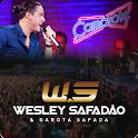 Wesley Safadão  LED icon