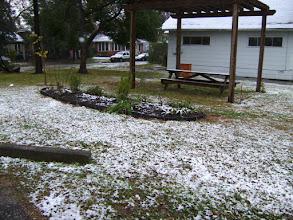 Photo: Habitat snow - Vance- 12/4/09