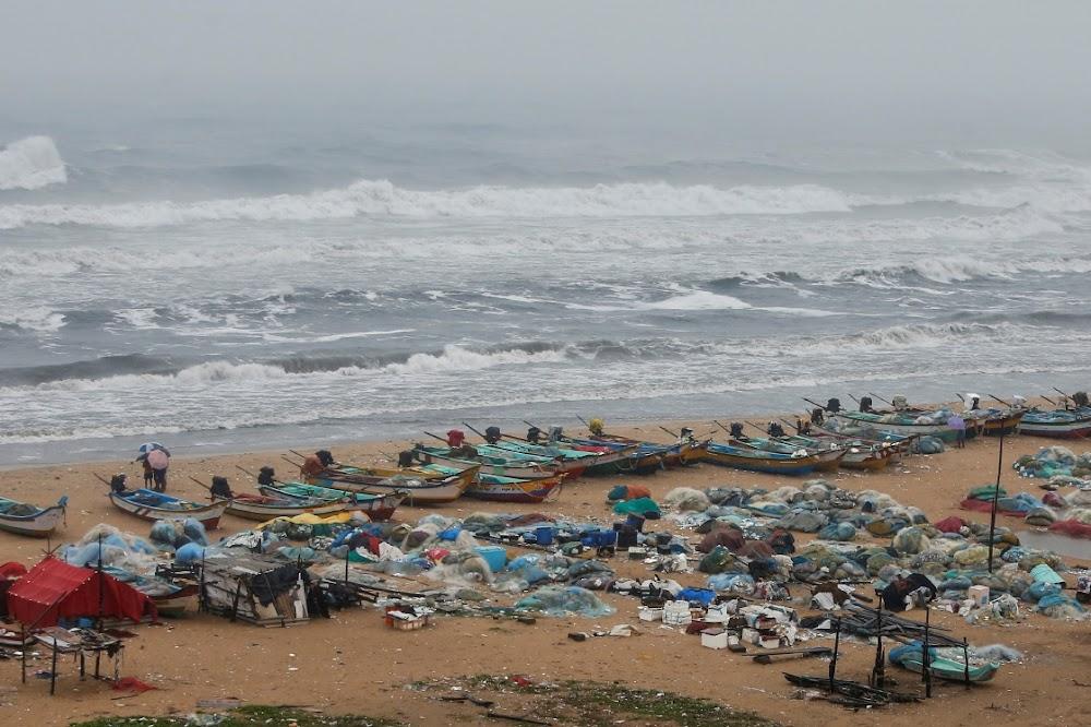 Cyclone Nivar tears down power lines, trees in India