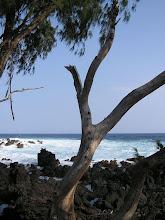Photo: C1250074 Maui - wulkaniczne wybrzeze