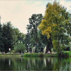 Свадебный фотограф Николай Романенко (romani). Фотография от 27.08.2015