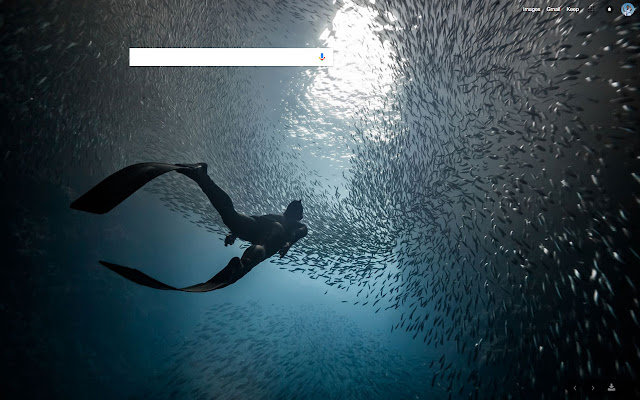 National Geographic Photo of the day New Tab