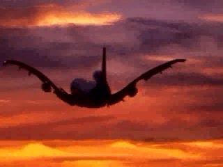 Future of Aviation?