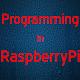 Programming in RaspberryPi