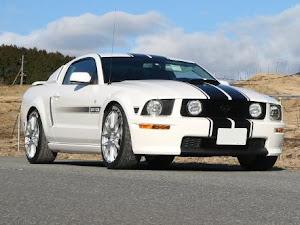 マスタング クーペ  GT Californiaspecialのカスタム事例画像 T さんの2020年02月01日09:45の投稿