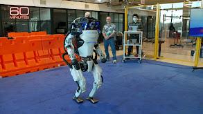 Incoming; Dynamic Robots; Grizzlies thumbnail
