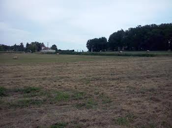 Terrain à bâtir 1500 m2
