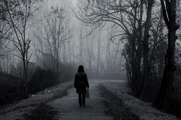 Dove porta il sentiero? di Furlissima