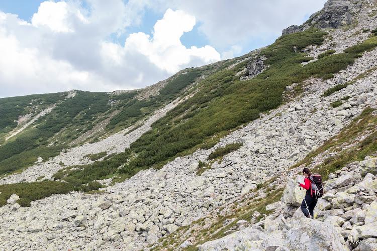 Traversând muntele Slivei, foto Marius