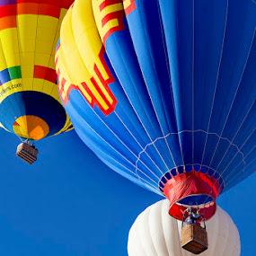 Albuquerque International Balloon Fiesta by Samuel Burns - Uncategorized All Uncategorized (  )