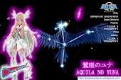 Aquila no Yuna - Shin Bronze Clothstone