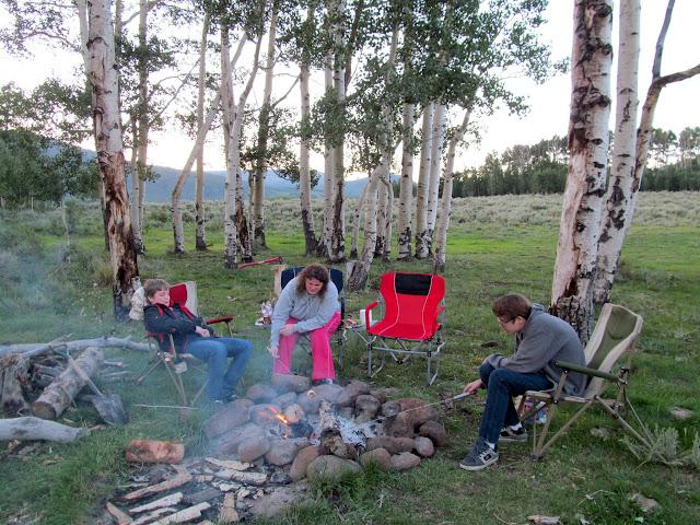 The family roasting marshmallows