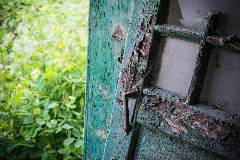 Verde, Verde e ancora Verde di phrp