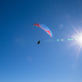 Paragliding from Niesen, Switzerland by Augustin Anic - Sports & Fitness Other Sports ( paragliding, mountain, autumn, sunny, switzerland )
