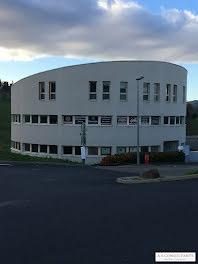 locaux professionels à Monistrol-sur-Loire (43)