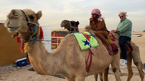 Dubai: Carp, Camel and Cocoons thumbnail