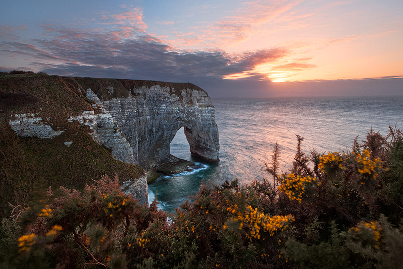 Photo: Manneporte - A picturesque sunset above the famous limestone arch Manneporte near Étretat. In the pictures foreground: gorse shrubs in full bloom at the beginning of April - very typical for this region. Spring 2012 Normandy, France For Fine Art Prints and more Work please visit my website: www.richterphotographie.de