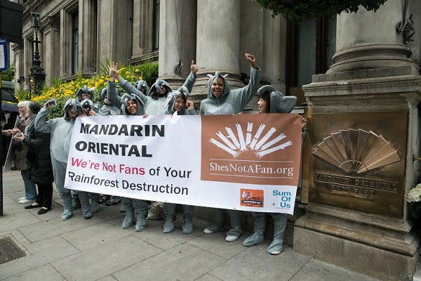 Protesters donned elephant costumes last month for a demonstration outside the Mandarin Oriental's London branch after the launch of the She's Not a Fan campaign targeting the luxury hotel chain's sister company Astra Agro Lestari, one of Indonesia's biggest plantation developers. Photo courtesy of Forest Heroes