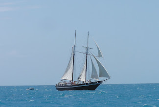 Photo: The Schooner Wolf