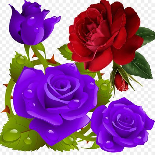 flowers and roses live gif app aplikasi di google play