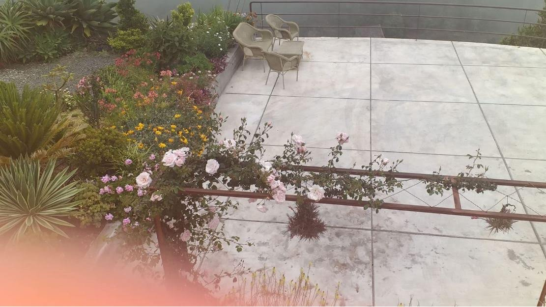 Explosie in de tuin