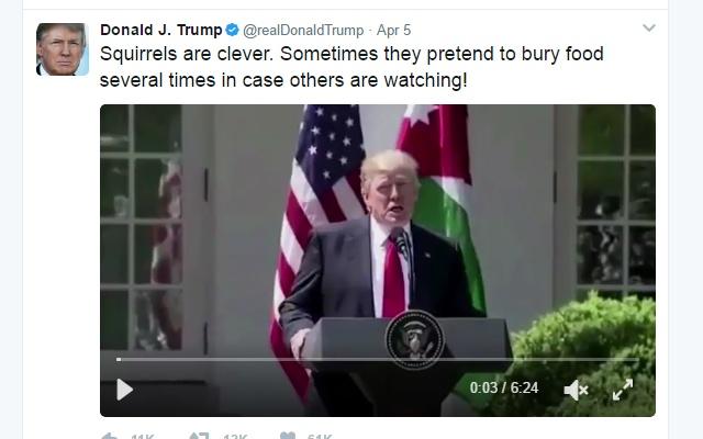 Nice Trump