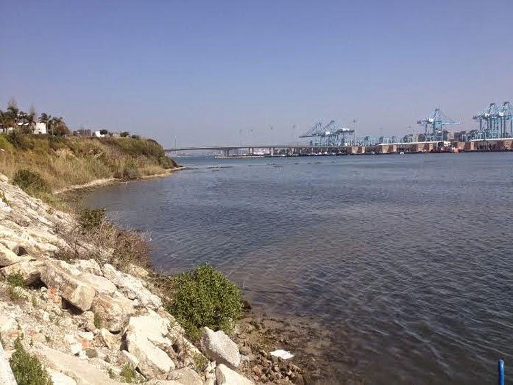 La Voz de Ageciras apuesta por la recuperación de la Playa de los Ladrillos