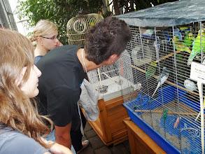 Photo: Odwiedzamy papużki w palmiarni