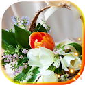 Spring Lilies n Tulips icon