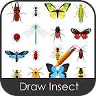 Draw Insect icon