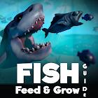Tips Fish Feed & Grow Fish Free