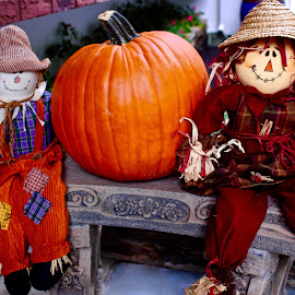 Scarecrows and pumpkin. by Peter DiMarco - Public Holidays Halloween ( halloween, fall, holiday, pumpkin, scarecrow )