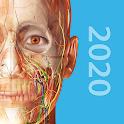 Human Anatomy Atlas 2020:Complete 3D Human Body icon