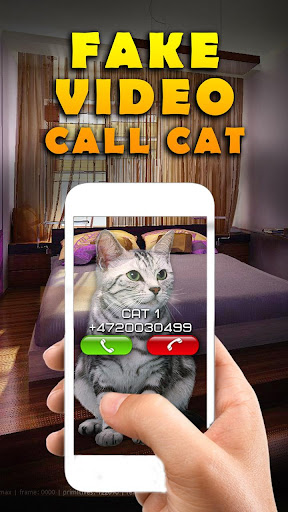 Fake Video Call Cat
