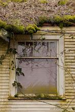 Photo: Windows Left Behind