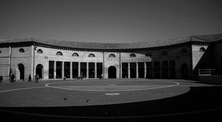 Around the circle di mircotam