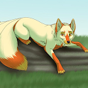 Fox Anime Wallpapers icon