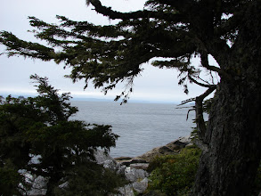 Photo: Queen Charlotte Strait from Skull Cove.