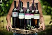 Вино Боденского озера
