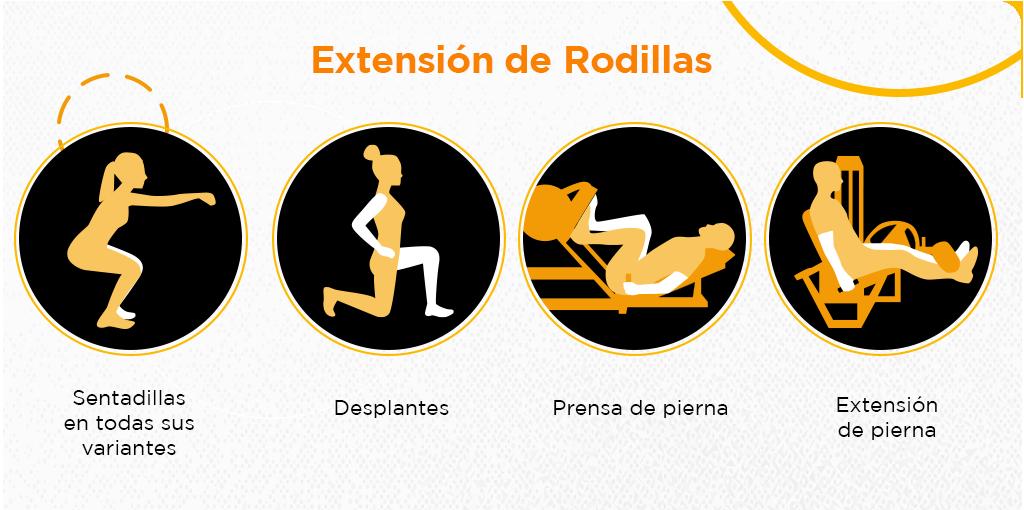 rutina de gym para piernas y gluteos extension de rodillas