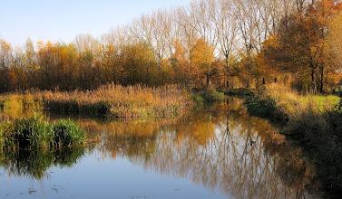 Photo: Puur Natuur in Drenthe